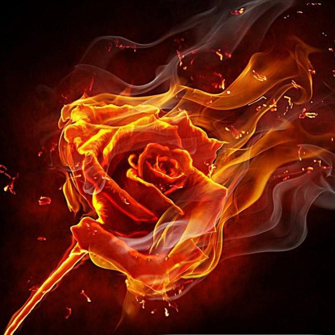 火炎焱动漫