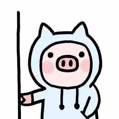 猪猪剧集汇