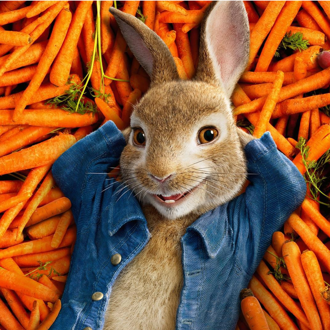 贝贝兔来搞笑