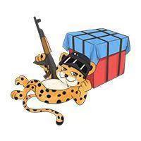 小猎豹dd