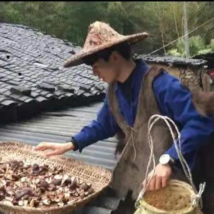 建和乡村生活