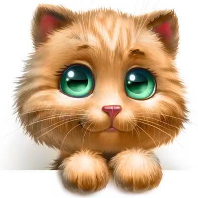 小猫少儿玩具