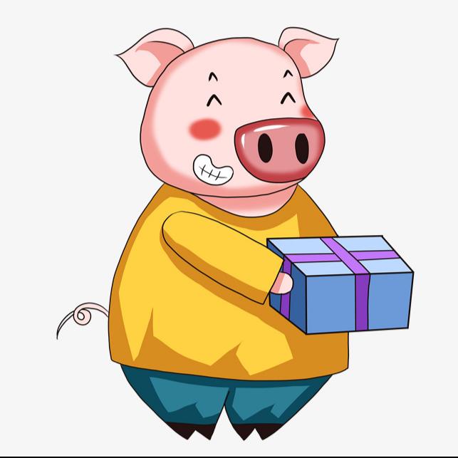 小猪游戏迷
